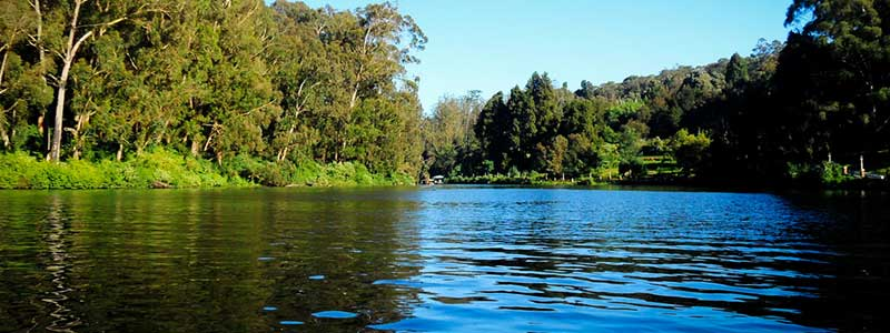 Ooty Lake Tourist Attraction