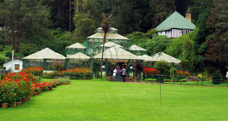Places to Visit Ooty Botanical Gardens