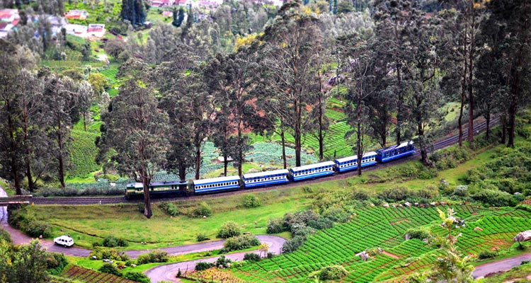 Places to Visit Ooty Toy Train